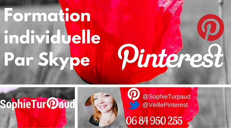 Formation individuelle Pinterest par Skype (1)