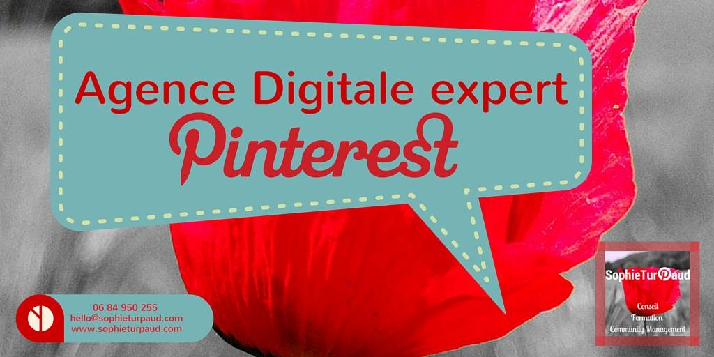 Agence Digitale pro Pinterest