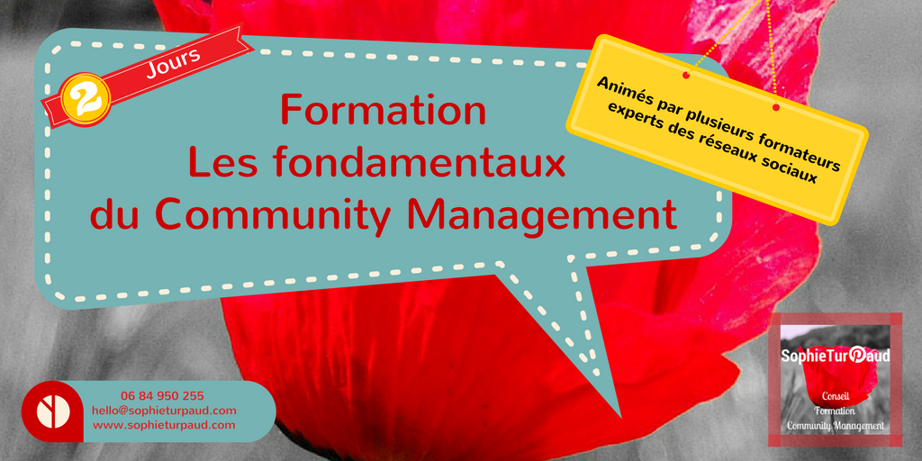 Formation les fondamentaux du community management via @sophieturpaud