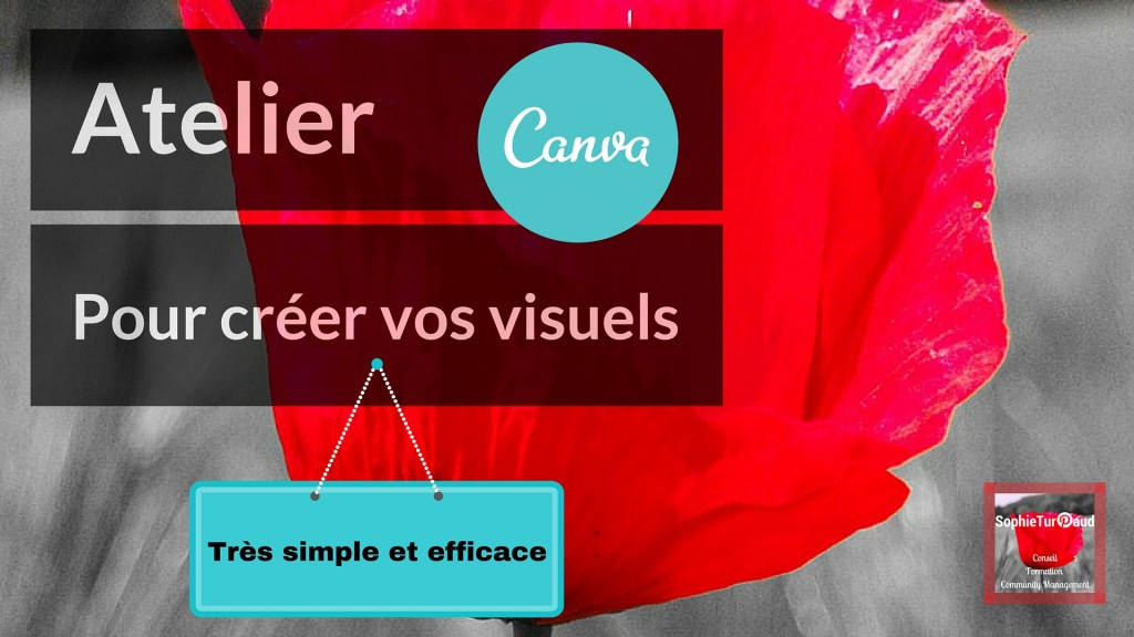 Atelier Canva via @sophieturpaud