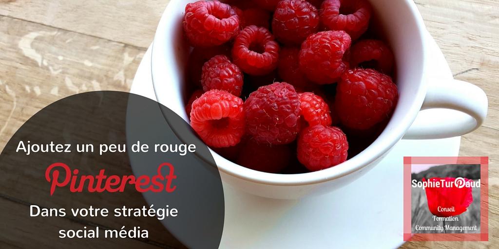 Ecommerce : Un peu de rouge Pinterest dans votre stratégie «social média» ?
