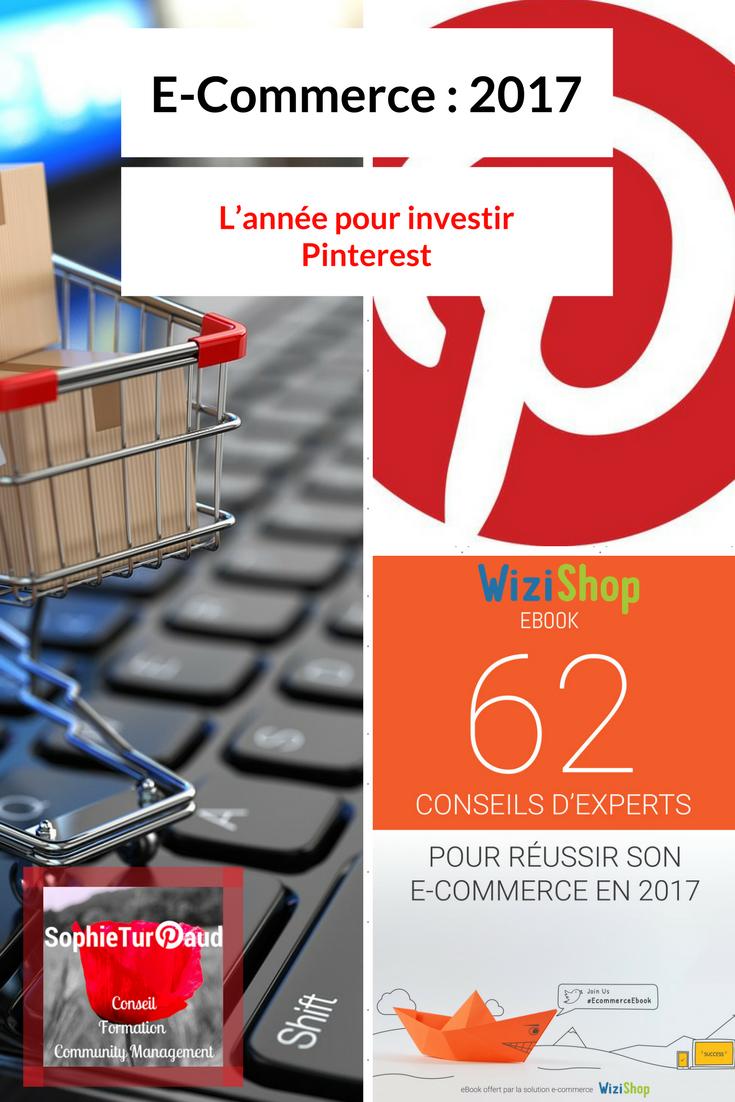 E-Commerce - 2017, L'année pour investir Pinterest via @sophieturpaud #EcommerceEbook cc @wizishop