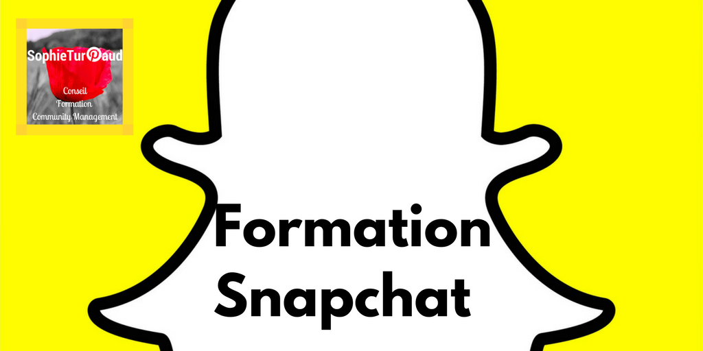 Formation Snapchat via @sophieturpaud