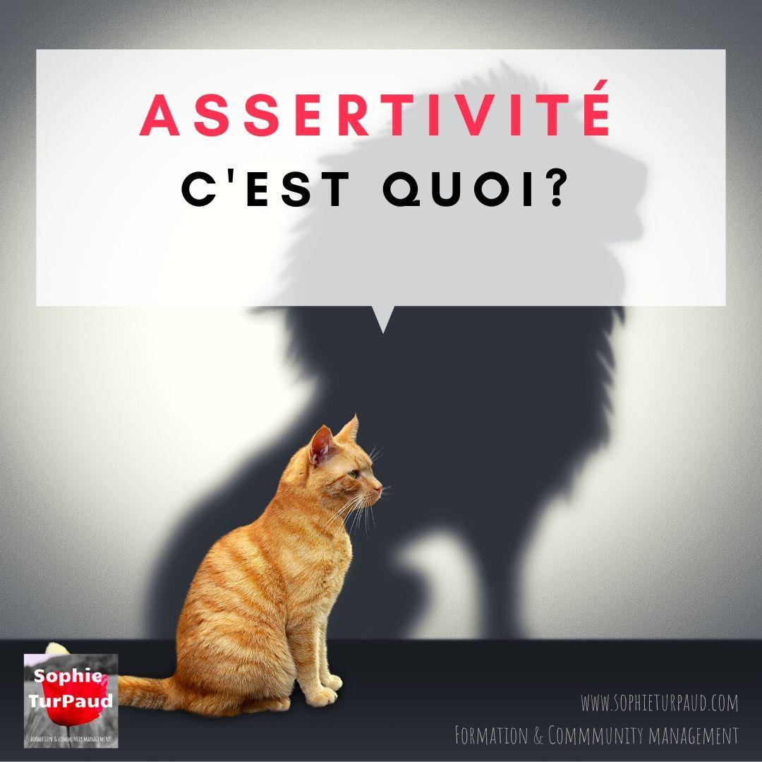 L'assertivité c'est quoi ? @sophieturpaud #confiance #affirmation