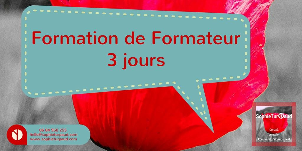 Formation de formateur en 3 jours sur Toulouse ou à distance via @sophieturpaud O.F. #Datadocké