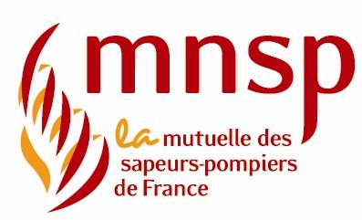 logo_mnsp_2012