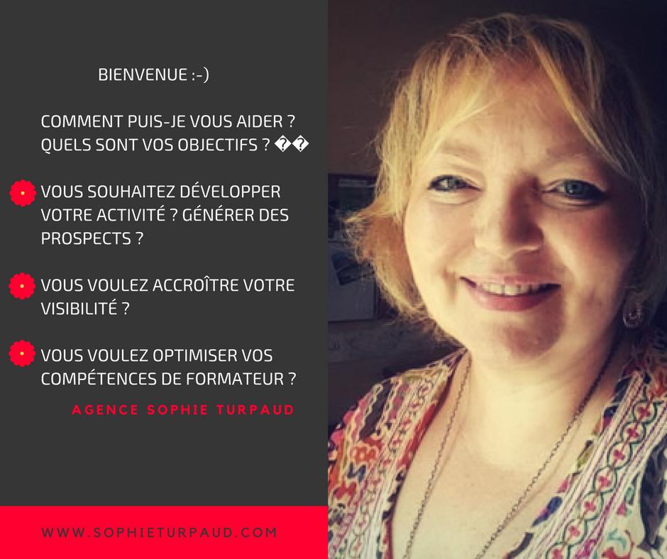 à propos de l'agence Sophie Turpaud