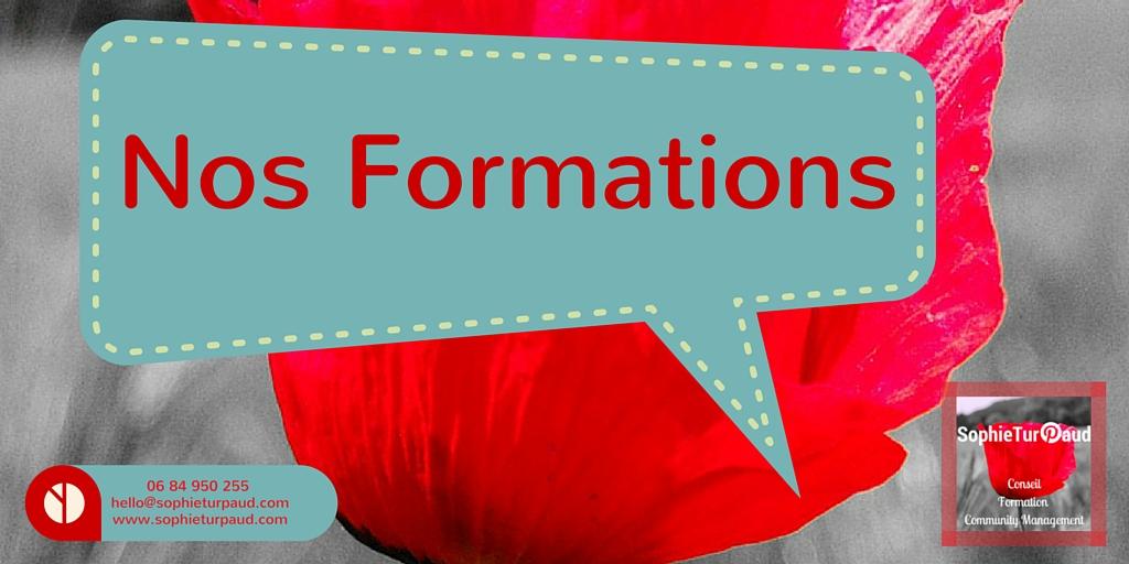Formation expert Pinterest , Community management, Pédagogie , Relation Client 2.0.