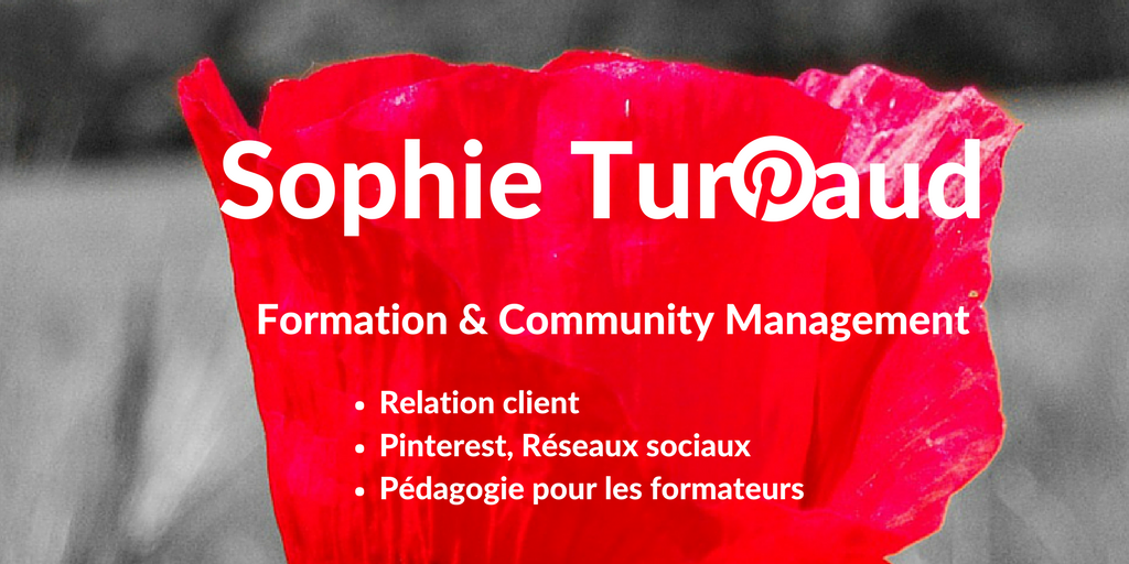 Formation et Community Management expert Pinterest