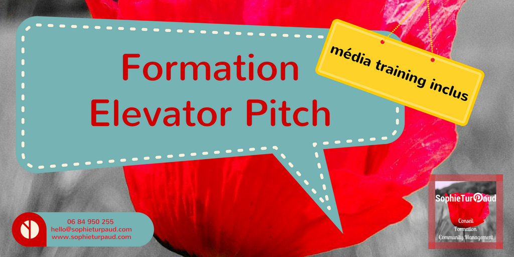 Formation Elevator Pitch avec média training via @sophieturpaud