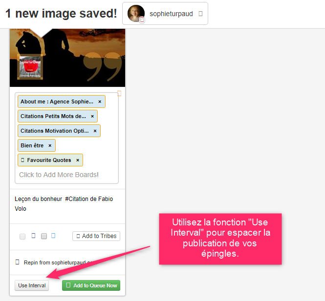 Fonction Use Interval de Tailwind pour Pinterest via @sophieturpaud