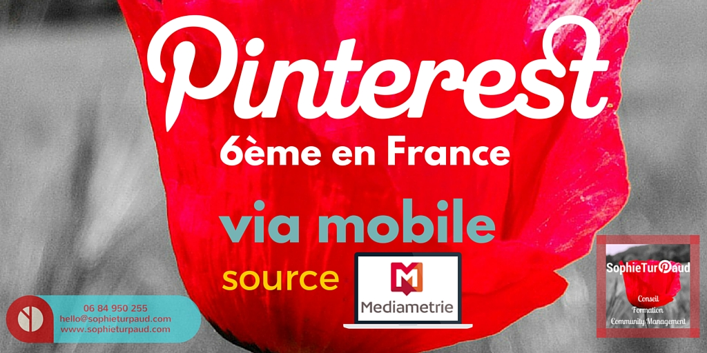 Pinterest 6ème en France selon MédiaMétrie via @sophieturpaud