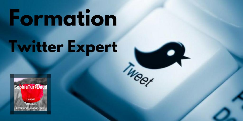 Formation Twitter expert via @sophieturpaud