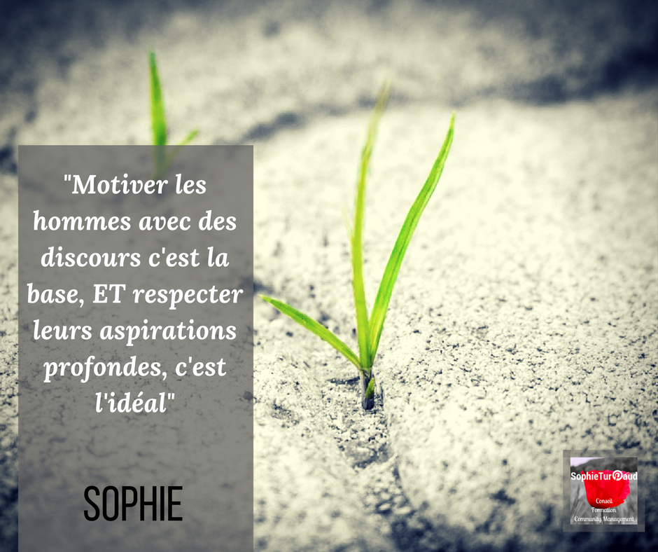 Les citations inspirantes sur la motivation et le leadership via @sophieturpaud