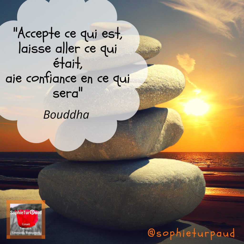 _Accepte ce qui est, laisse aller ce qui était, aie confiance en ce qui sera_ Bouddha via @sophieturpaud