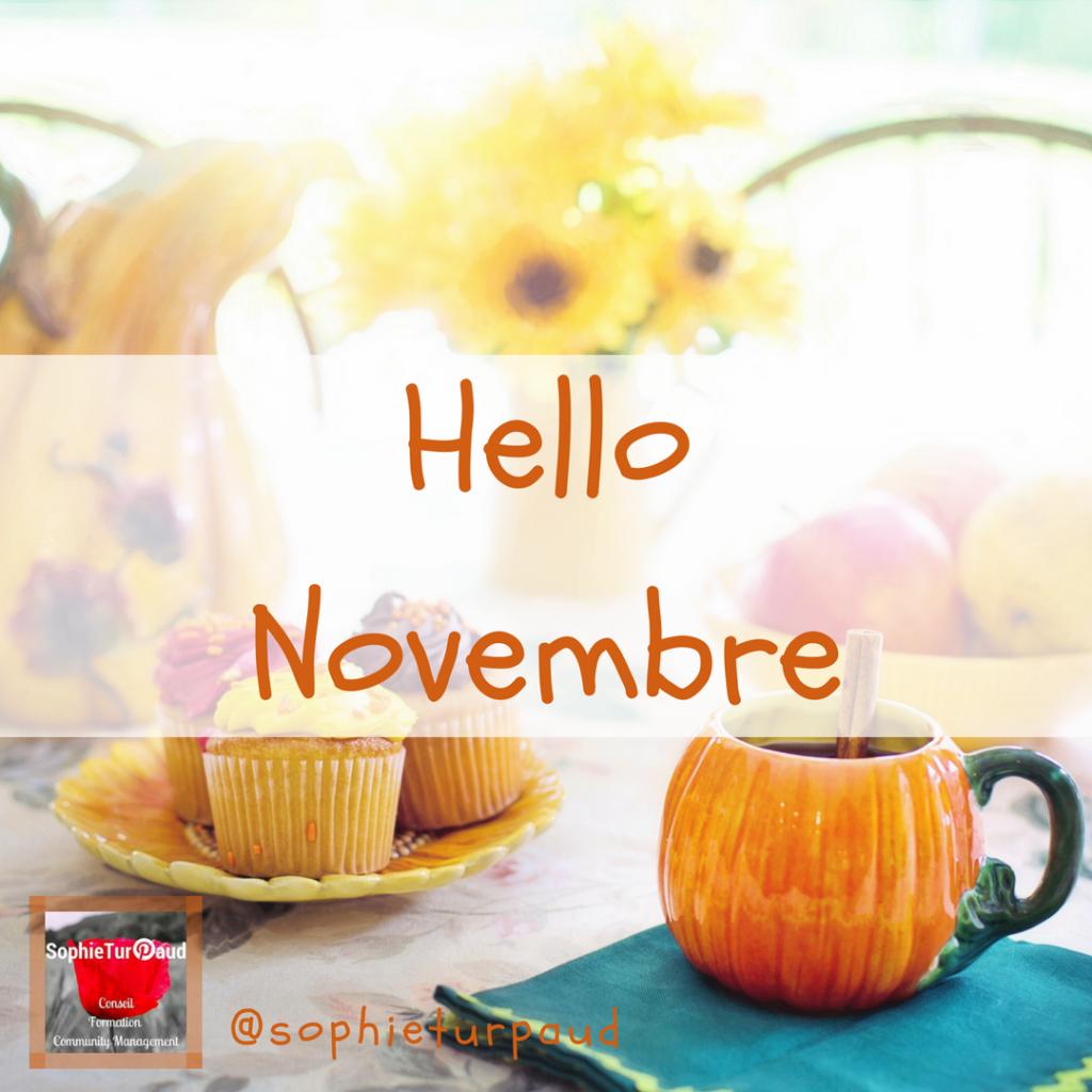 Hello Novembre et les tendances Pinterest via @sophieturpaud