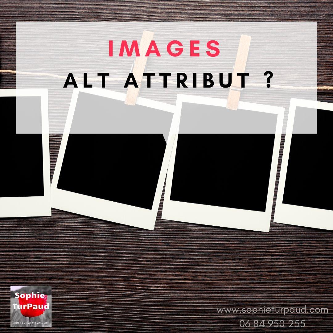 #SEO : Images et Alt Attribut ? De quoi parle-t-on ?  via @sophieturpaud #Pinterest
