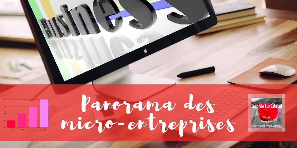 Panorama des micro-entreprises : Faits et chiffres