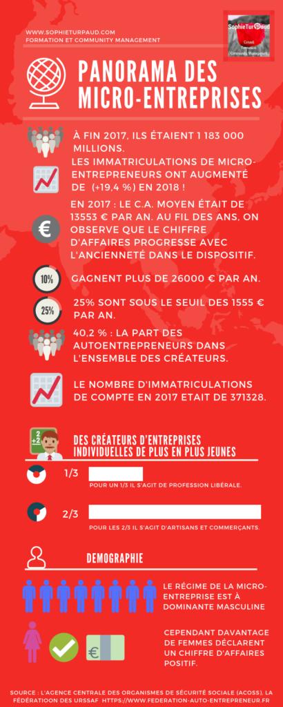 Panorama des micro-entreprises . ex auto-entrepreneurs. via @sophieturpaud #AE #Entrepreneur