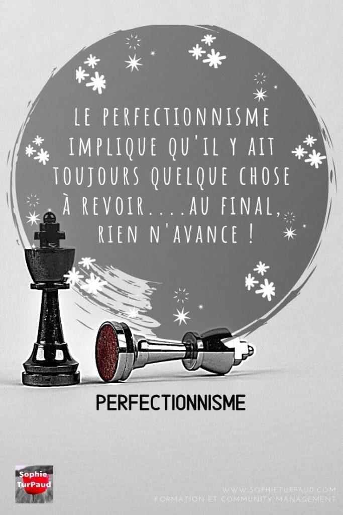 Citation Perfectionnisme via @sophieturpaud