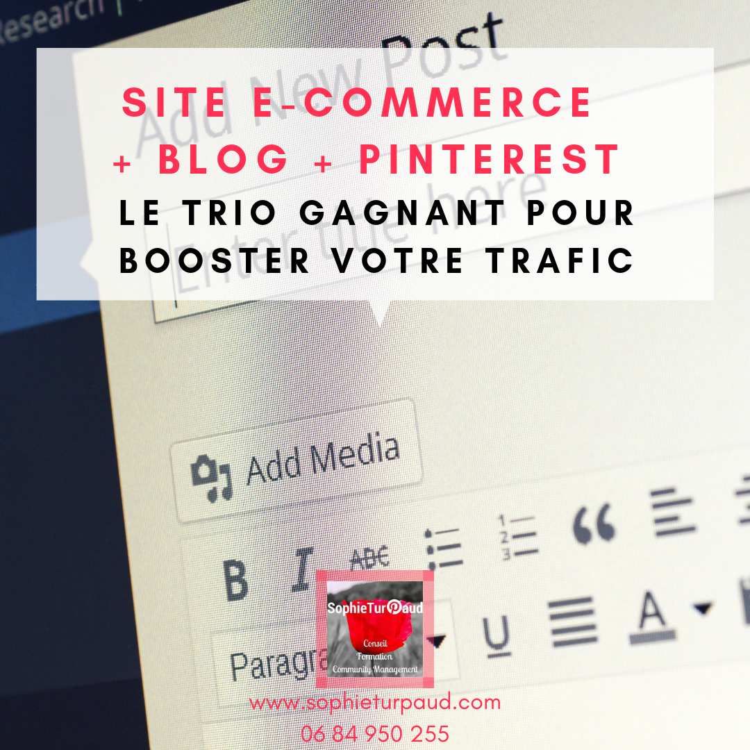Le trio gagnant pour booster votre trafic via @sophieturpaud #Pinterest #Blog