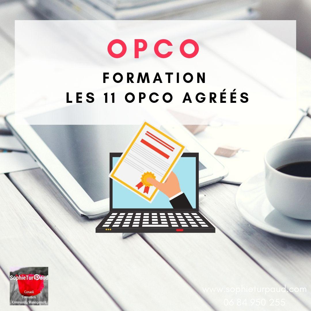 Les 11 OPCO agréés en formation professionnelle via @sophieturpaud #Formpro
