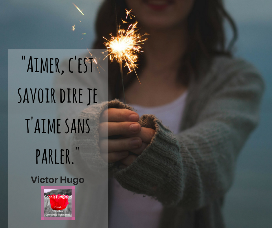 """#Citation """"Aimer, c'est savoir dire je t'aime sans parler."""" Victor Hugo via @sophieturpaud"""