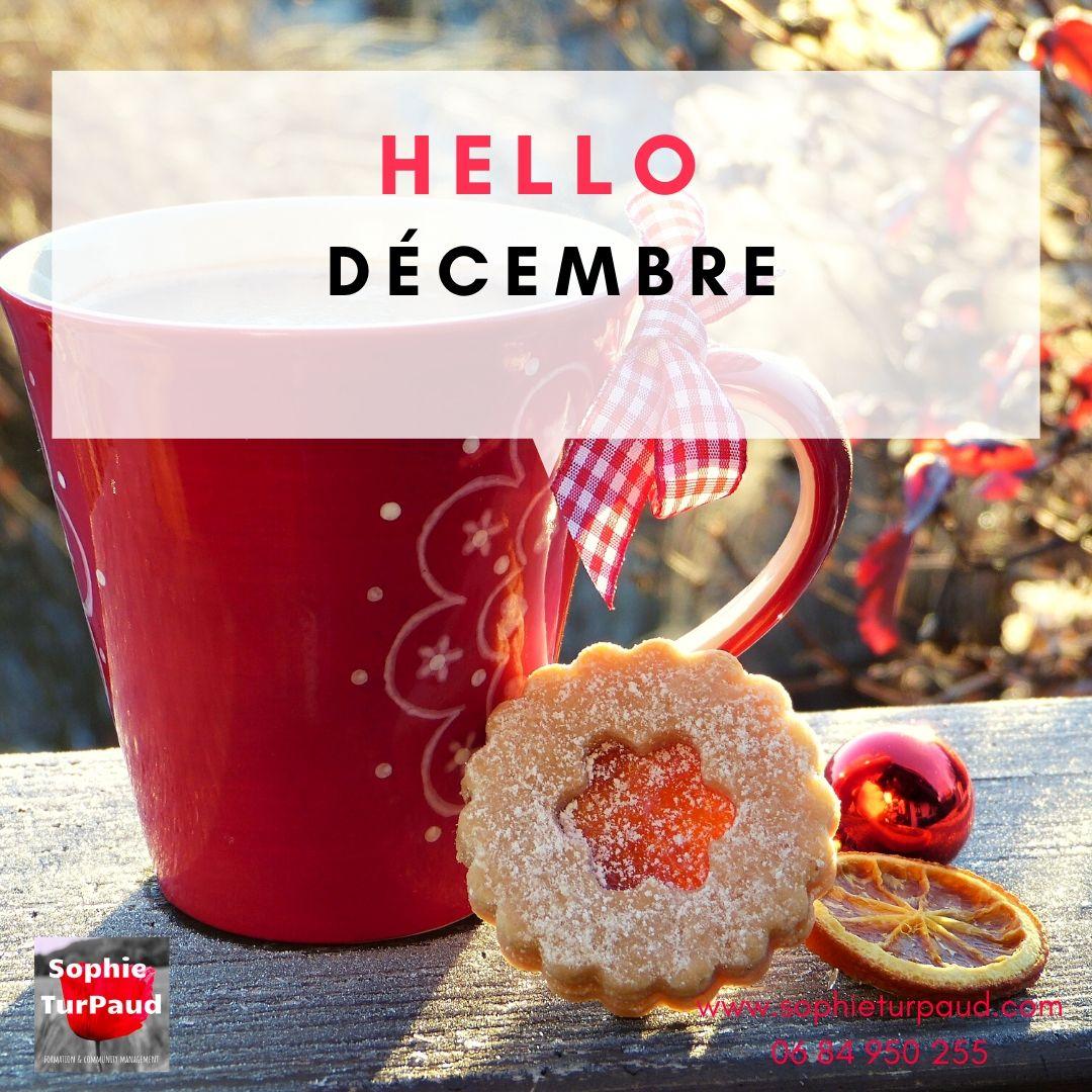 Hello décembre via @sophieturpaud #Noel