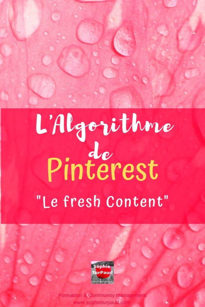 L'algorithme de Pinterest et le fresh content via @sophieturpaud #SEO #Algorithme #PinterestMarketing