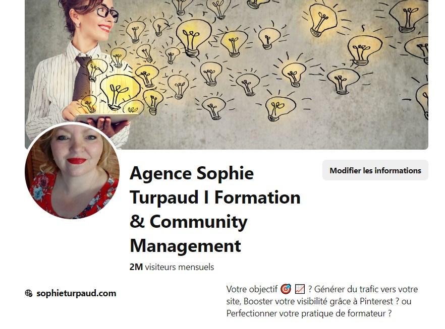 Mon compte Pinterest à février 2020 @sophieturpaud