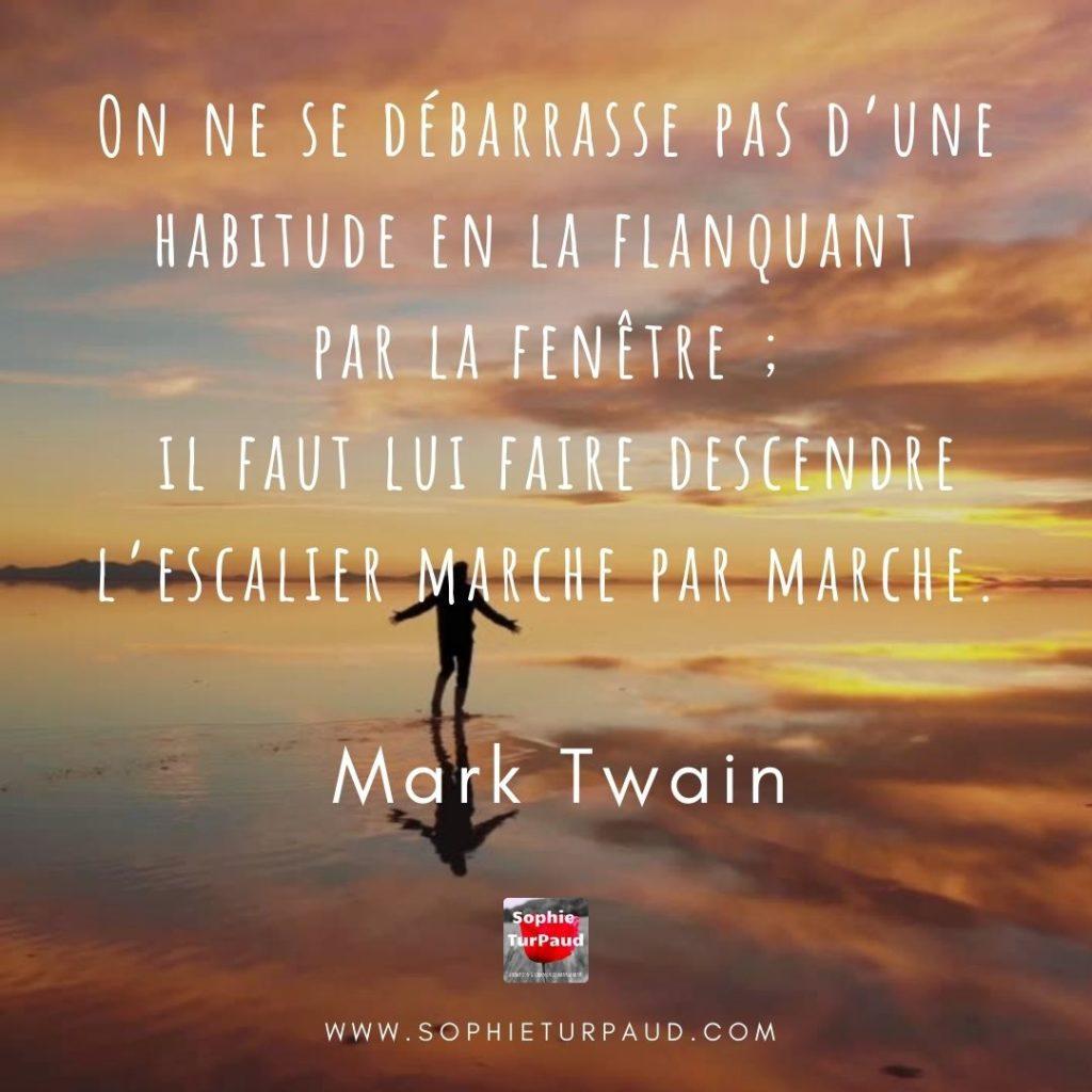 Citation Mark Twain via @sophieturpaud