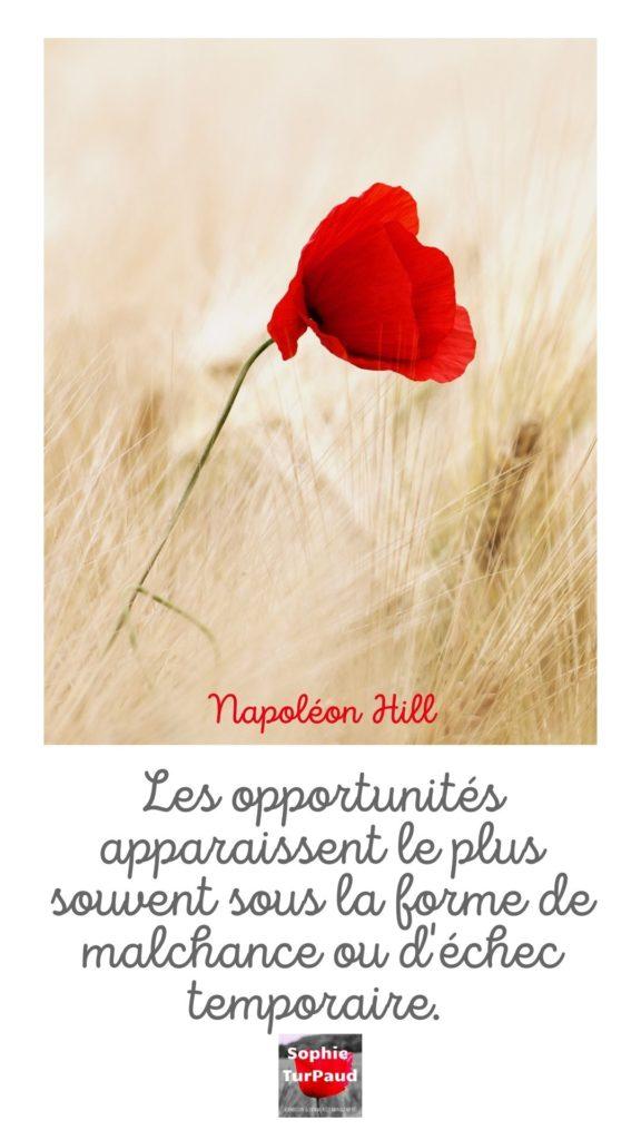 Citation Napoleon Hill via @sophieturpaud